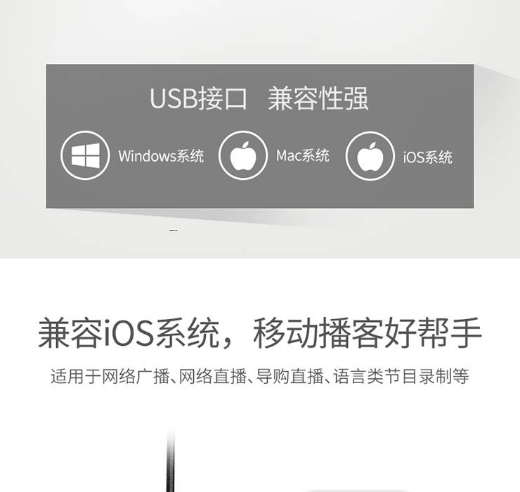 BM-621USB数字界面麦克风 (6).jpg